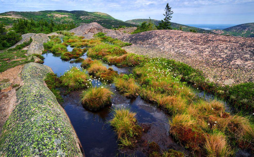 Cadillac Mountain South Ridge Trail