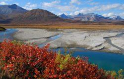 Noatak River, Alaska